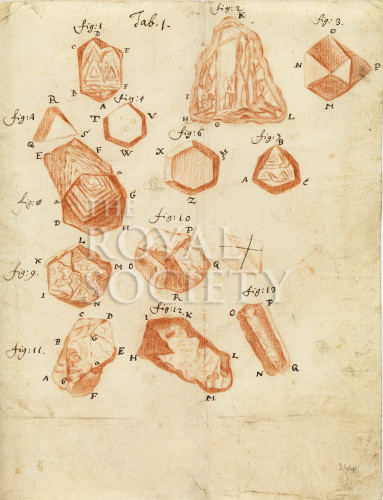 image Leeuwenhoek A v, IM006892