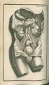 image cheselden, w_anatomy of the human body_1726_tab15