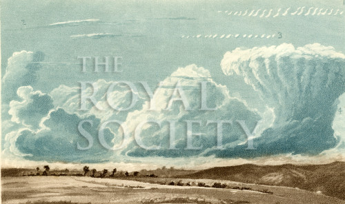 image forster t_researches_1823_plate 4