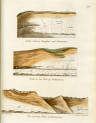 image mantell g_fossils_1822_plate 5