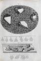 image hooke_micrographia_1665_schemvii