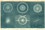 image forster t_researches_1823_plate 6