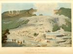 image hochstetter f von_neu-seeland_1863_plate 8