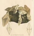 image sowerby j_mineralogy v1_1804_plate 33