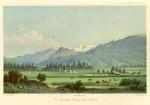 image hochstetter f von_neu-seeland_1863_plate 9