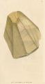 image sowerby j_mineralogy v1_1804_plate 35