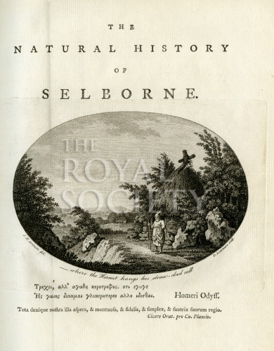 image white g_natural history of selborne_1789_frontispiece