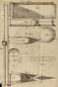 image hooke_r_micrographia_336
