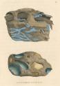 image sowerby j_mineralogy v1_1804_plate 10
