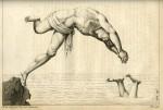 image bernardi, o de_l_uomo galleggiante_1794_plate 13