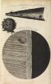 image Hooke, R_Micrographia_1665_needle_schemII_fig1&2