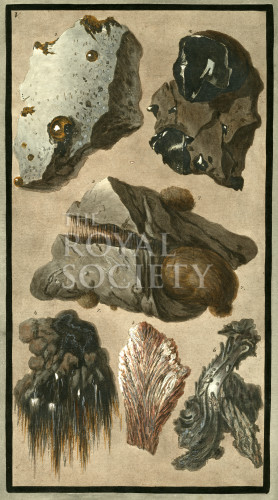image hamilton w_supplement_1779_plate 5