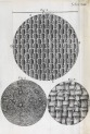 image hooke_micrographia_1665_schem xiiii